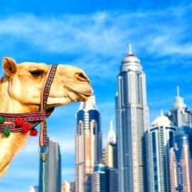 Dubai plaze