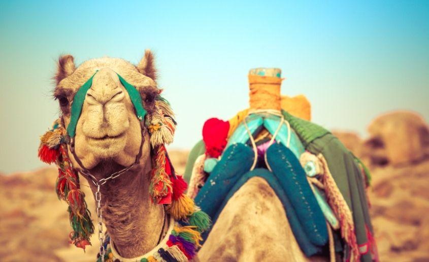 Egipat putovanje